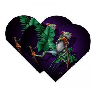 Amérique du Sud Arbre Grenouille à suspendre Cœur en simili cuir Marque-page–Lot de 2 de la marque Graphics and More image 0 produit