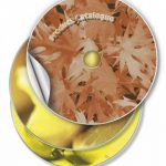 Avery 50 Etiquettes Autocollantes pour CD - Ø117mm- Impression Laser, Jet d'Encre - Blanc (C9660) de la marque Avery image 1 produit