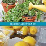 DymoD1 Ruban d'étiquette résistant pour Etiqueteuse 12mm x3 m Blanc/Rouge de la marque DYMO image 2 produit