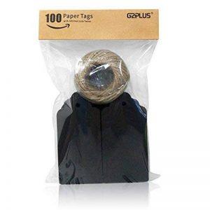 G2plus Lot de 100 étiquettes pour cadeau en papier Kraft de 5x 10cm - étiquettes vierges pour mariage, anniversaire, bagages - étiquettes marron à accrocher avec 30mètres de ficelle de jute Noir de la marque G2PLUS image 0 produit