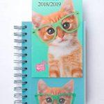 Grupo Erik Editores Studio Pets–Agenda Scolaire en français avec motif chat, 11.4x 16cm de la marque Grupo Erik Editores image 1 produit