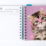 Grupo Erik Editores Studio Pets–Agenda Scolaire à Spirale en espagnol avec motif chat, 11.4x 16cm de la marque Grupo Erik Editores image 4 produit