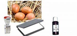 Oeuf Dateur kit–Comprend 4mm Mini en caoutchouc Tampon dateur, 425,2gram Rouge alimentaire, d'encre et d'un tampon d'encre à sec de la marque Athena image 0 produit