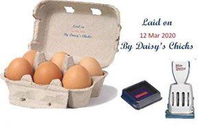personnalisé Egg Box Tampon dateur 67x 45mm–Max 4007 de la marque Athena image 0 produit